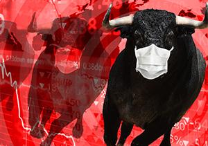 Return of the Bull